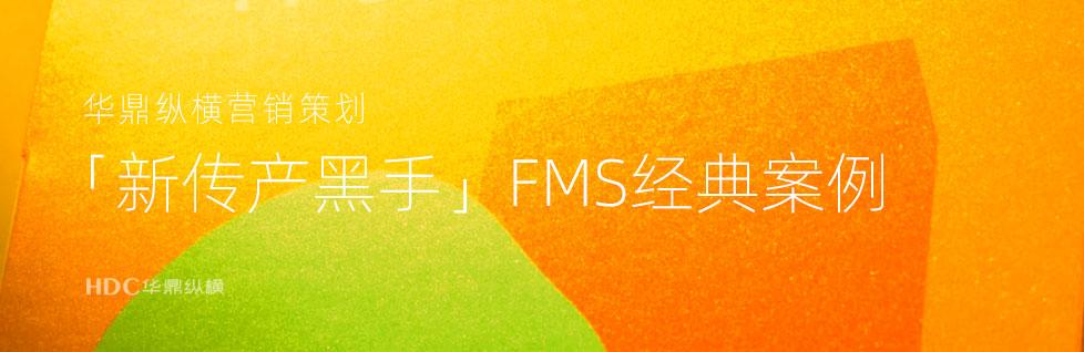青岛logo设计公司解析「新传产黑手」FMS案例logo设计