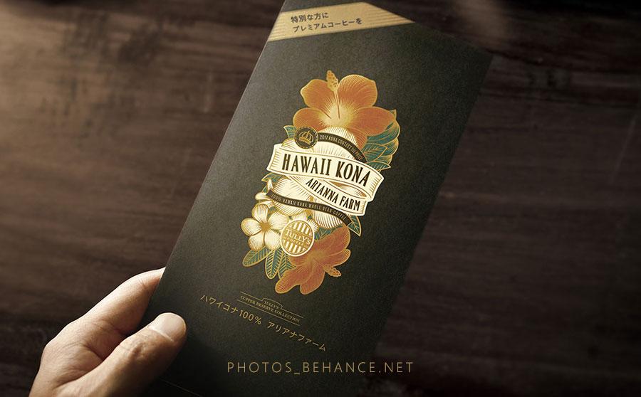 青岛包装设计插画的应用