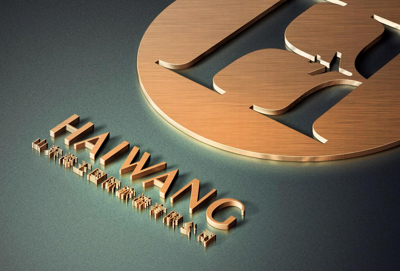 青岛品牌设计海王国际品牌设计策划.