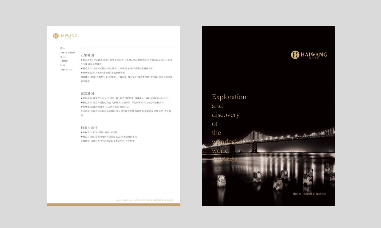 海王国际品牌设计策划