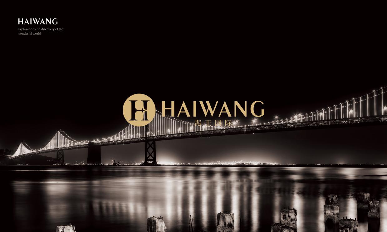 青岛品牌设计海王国际品牌设计策划海报